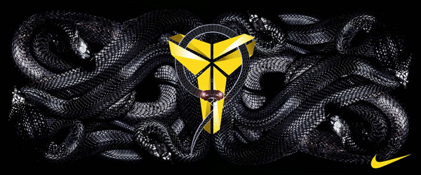 黑曼巴The black mamba